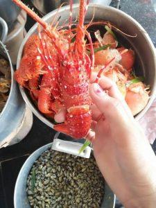 Tôm hùm mini ở Quy Nhơn