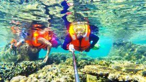Lặn ngắm san hô ở Cù Lao Xanh