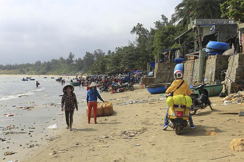Hàng trăm chiếc thuyền đánh cá của ngư dân, từ thuyền thúng tới thuyền lớn, ra khơi xa neo đậu ở ngay khu vực Mũi Rồng