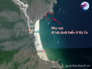 Khu vực được cấy san hô - Đi bộ dưới đáy biển ở Kỳ Co