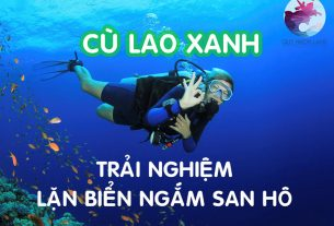 Lặn san hô ở Cù Lao Xanh