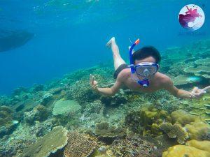 Lặn san hô ở Cù Lao Xanh với Kính bơi Diving và ống thở - Lặn Snorkeling