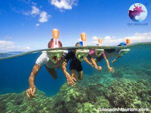 Lặn san hô ở Cù Lao Xanh với mặt nạ lặn