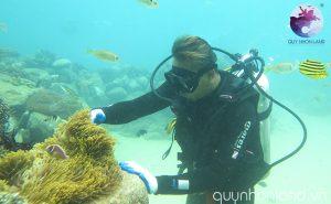 Đi bộ dưới biển ở Kỳ Co - Ảnh: Nguyễn Dũng