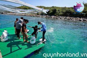 Khu vực khách du lịch được hướng dẫn kỹ thuật lặn san hô đi bộ dưới biển