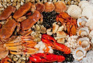 Hải sản Quy Nhơn - Chỉ với 15k tha hồ ăn hải sản ở Quy Nhơn