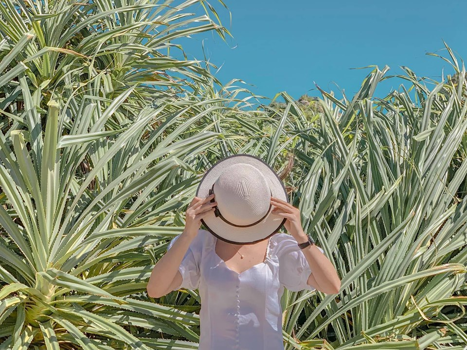 Du lịch Quy Nhơn mùa này đẹp bể bình cùng nắng và gió
