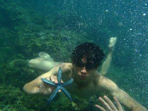 Những bãi san hô sống nằm rất gần mặt nước. - Ảnh Internet
