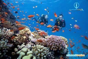 Lặn San Hô cũng là một hình thức giải trí ở trên đảo - Ảnh Internet