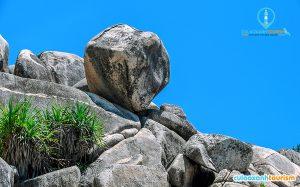 """Khu vực này chưa có tên chính thức nhưng thường được người dân địa phương và khách du lịch gọi là """"rừng đá"""". - Ảnh Internet"""