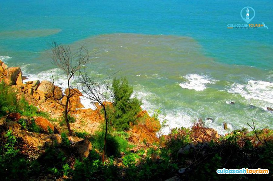 Làn nước trong xanh ở bãi dại quy nhơn - Ảnh Internet