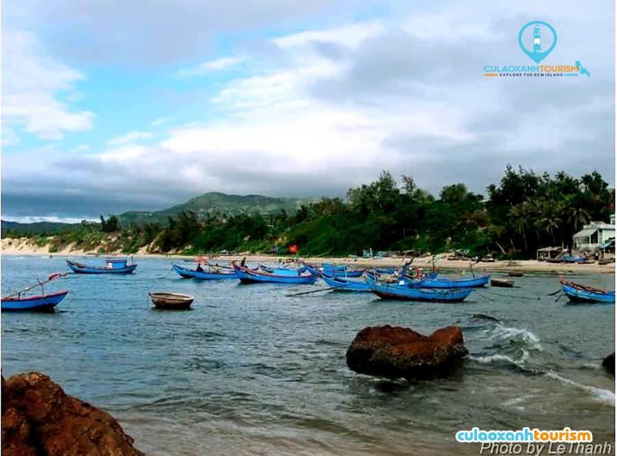 Những chiếc ghe đang được neo trong vịnh Tân Phụng ở Mũi Vi Rồng - Ảnh: Le Thanh