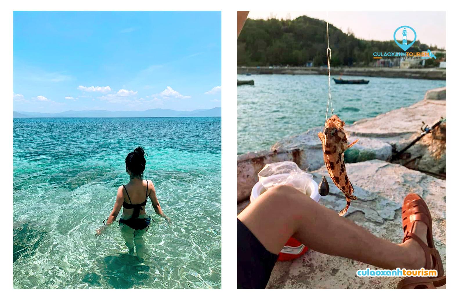 Ngắm San Hô & Câu Cá là thứ thư giãn không thể thiếu khi đến đây