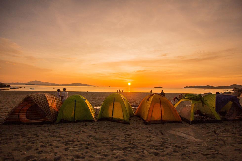 cắm trại quy nhơn-bãi sậy - Ảnh ST