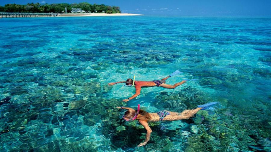 Lặn ngắm san hô là một trải nghiệm không thể quên khi đến với Cù Lao Xanh