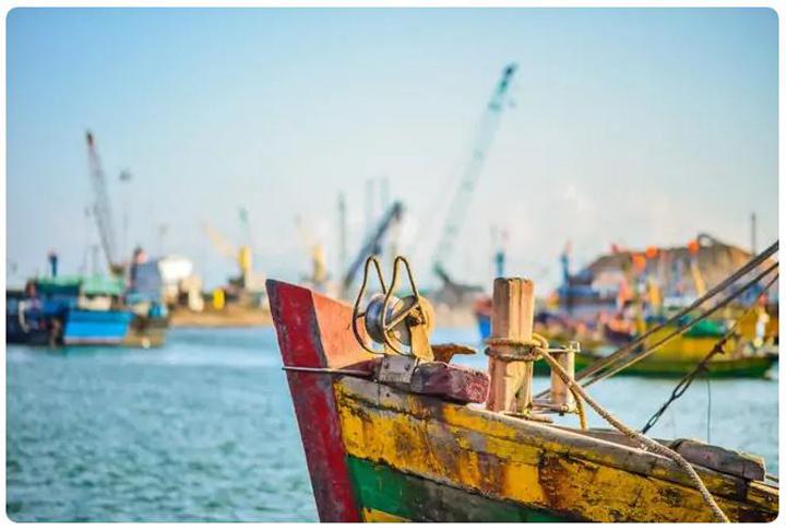 Vẻ đẹp bình yên tại Cù Lao xanh – Ảnh: Nguyễn Đức Toàn